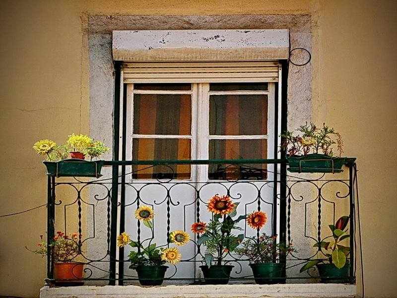 Кованые балконные ограждения N 4088